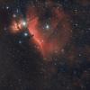 M42 et IC434.jpg