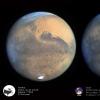 Petite Mars Corse _ Grande Mars Taille réelle Pic du Midi du 30-10-2020