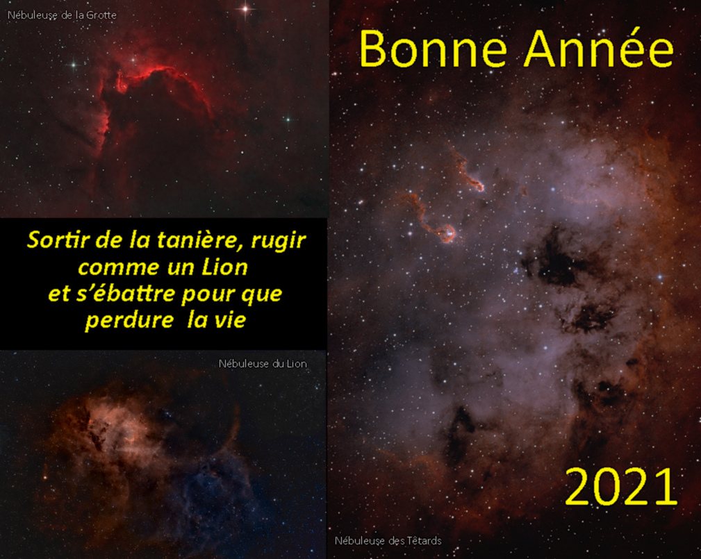 2021.jpg.31df2626d6ca97d3fcccaccbff861ab9.jpg