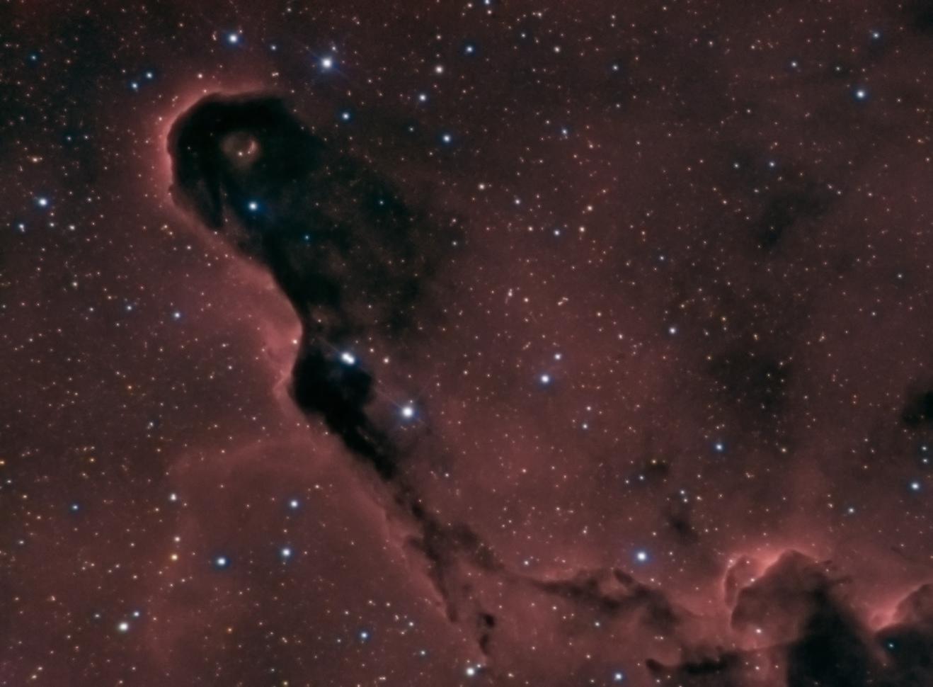 IC1396_v2_j.jpg.c716f59ebaa76f9ee93e25c9bec4abc0.jpg
