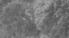 Pattern.png.479e437f4bd06ce690f9fc6ff38589cc.png