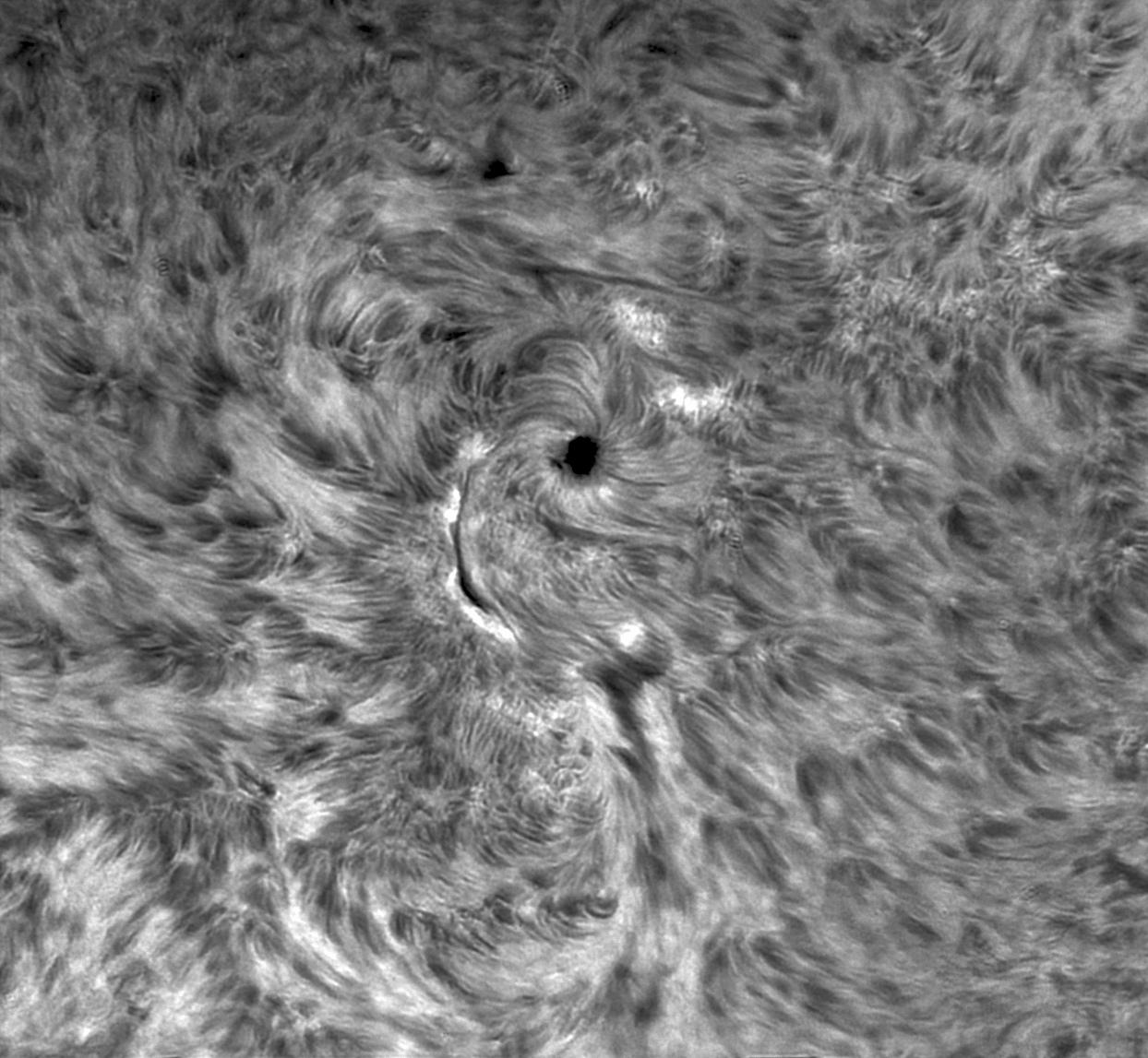 sol-bn-5nov20.jpg.bbdec7ed8674d8eb87c04e04dd292caf.jpg