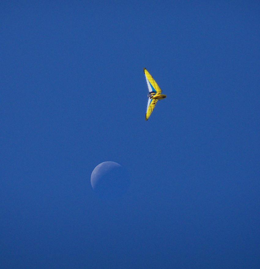 Lune&AileVolante-red_.jpg