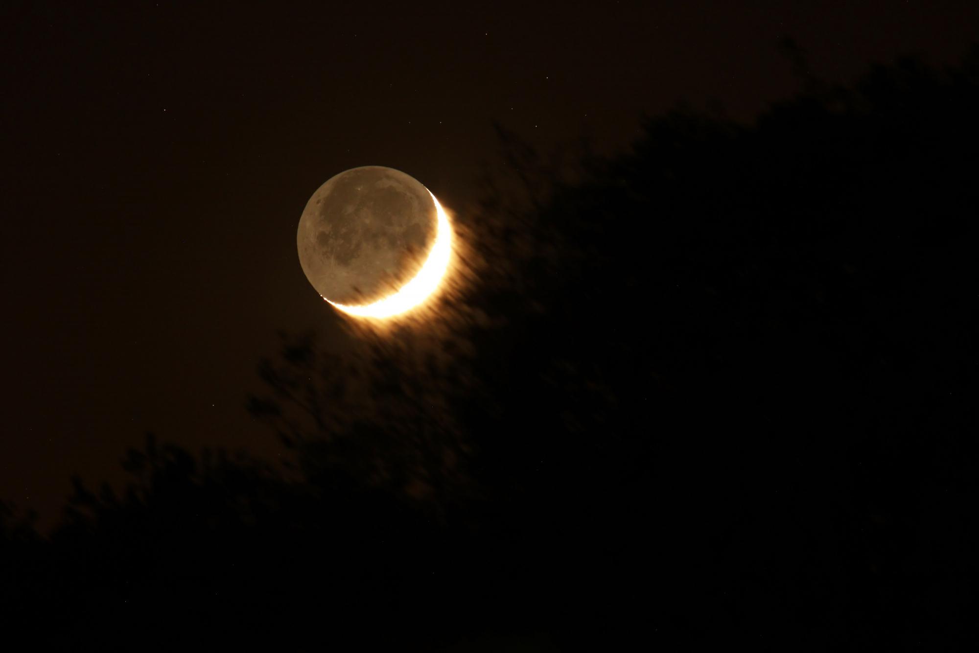 Lune cendrée 2787B2N1 send.jpg.jpg