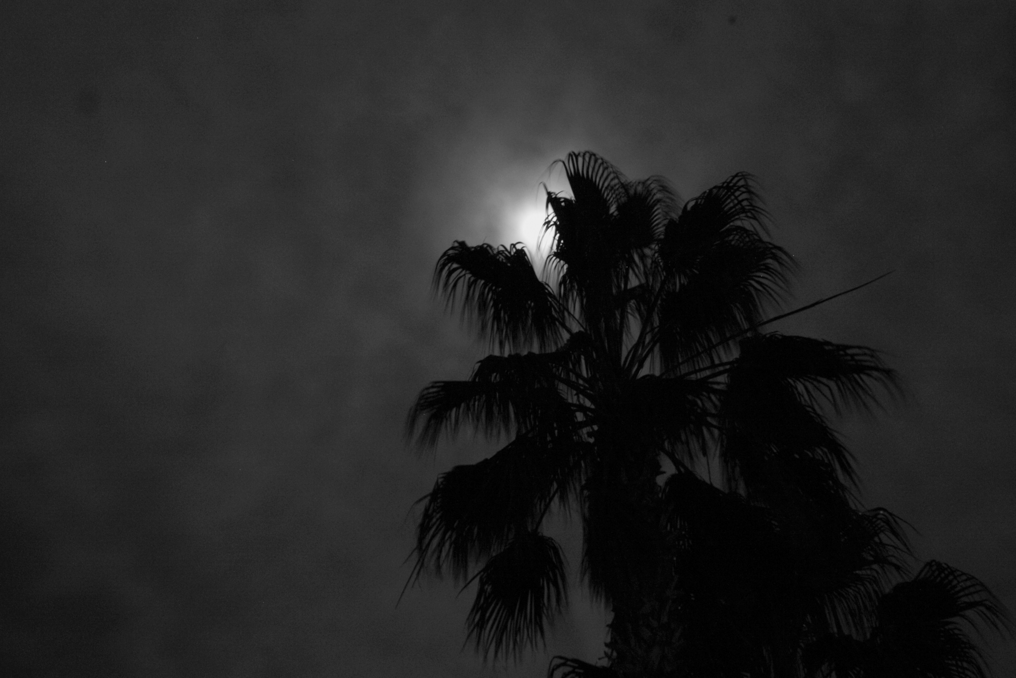 lune 2.jpg