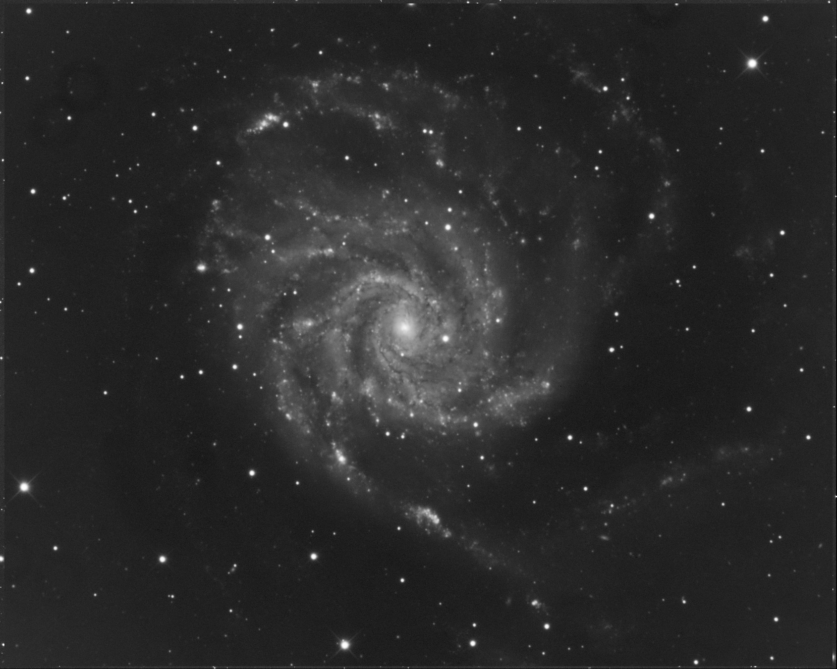 M101.jpg.8781844aa40d9749cea521cc296f6389.jpg