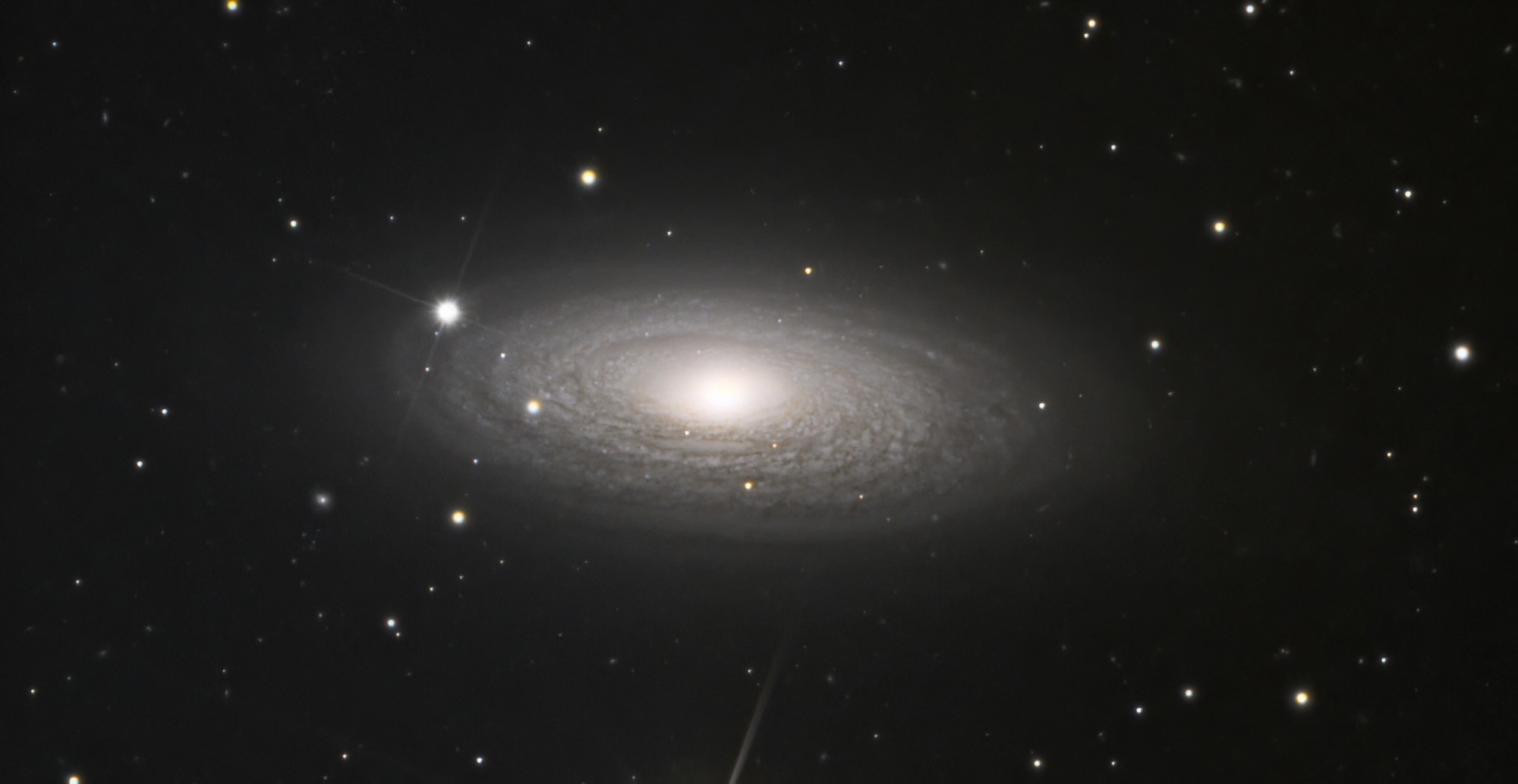 NGC2841-denoise-low-light.thumb.jpeg.7386ed1f212f016282290e0aee9bf24a.jpeg