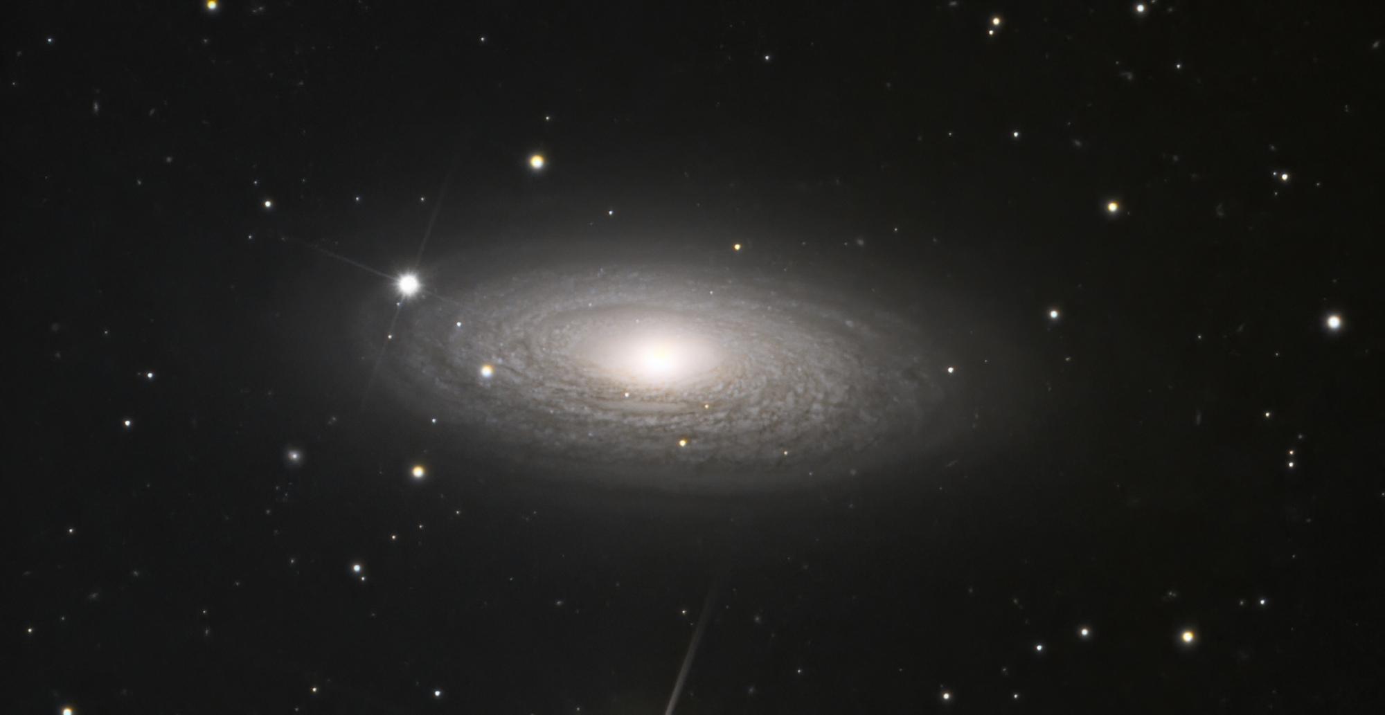 NGC2841-denoise-low-light.thumb.jpeg.7386ed1f212f016282290e0aee9bf24a.jpeg