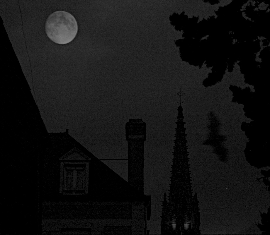 Nuit.jpg.c97a43792994077d4f38795364c006bd.jpg