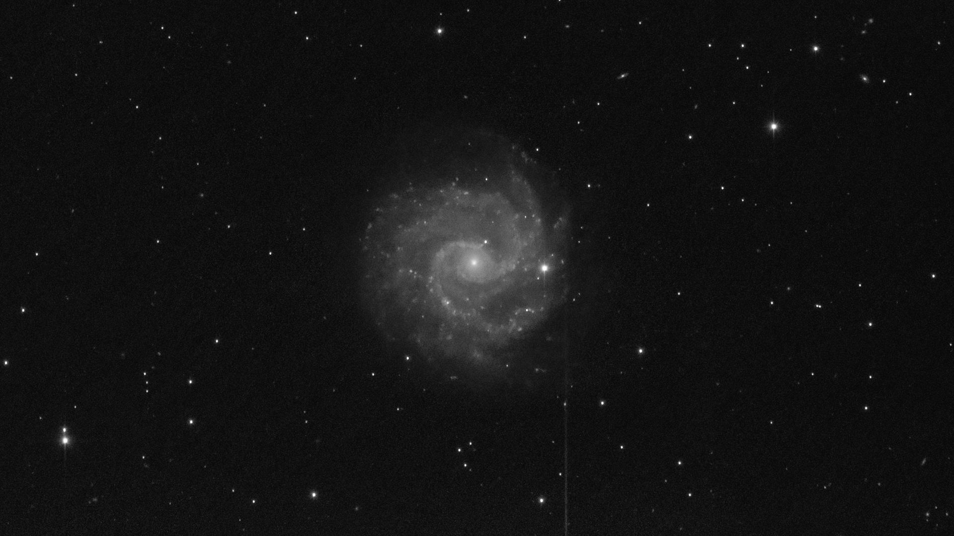 602f874022071_r_pp_NGC3184_stacked(1).jpg.dbee05a4b2b024349b868376dc236b25.jpg