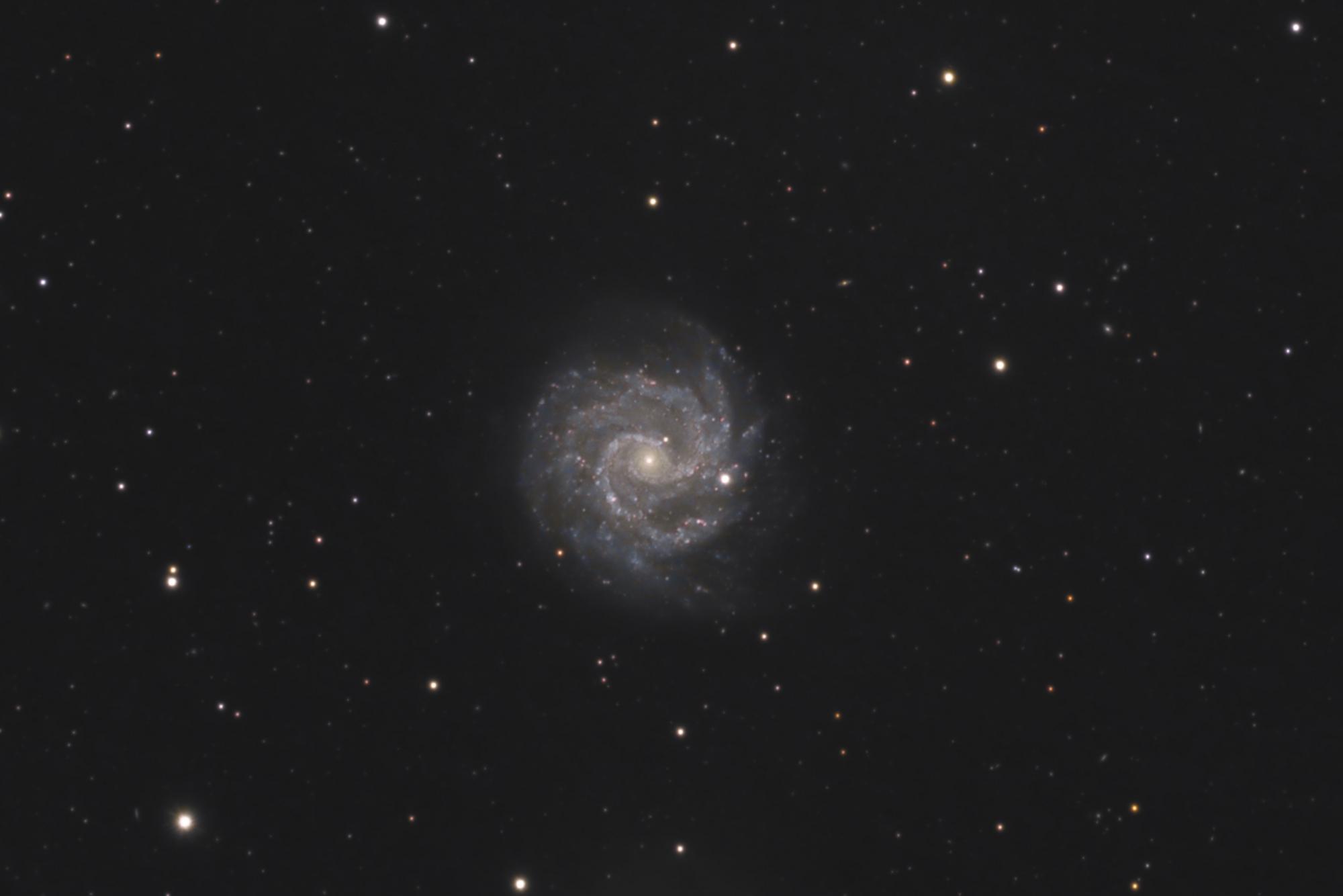 60300912e3650_NGC3184HaLRGB-2048-.thumb.jpg.b1ab9eef20a534174c5b09430d24e1eb.jpg