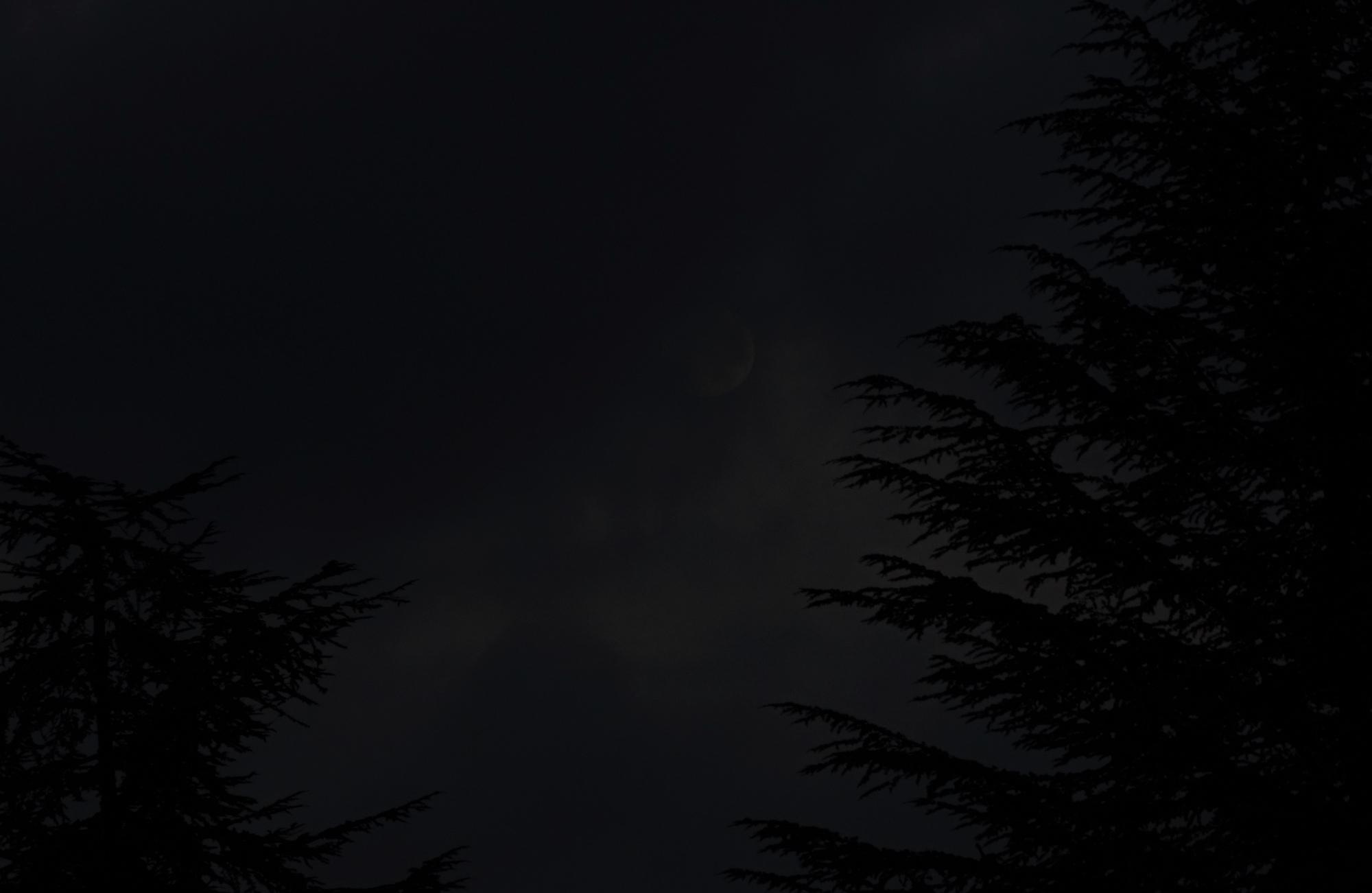 DSC04723.jpg2.thumb.jpg.8cb32ddce86daf96c35c9921e34c2703.jpg