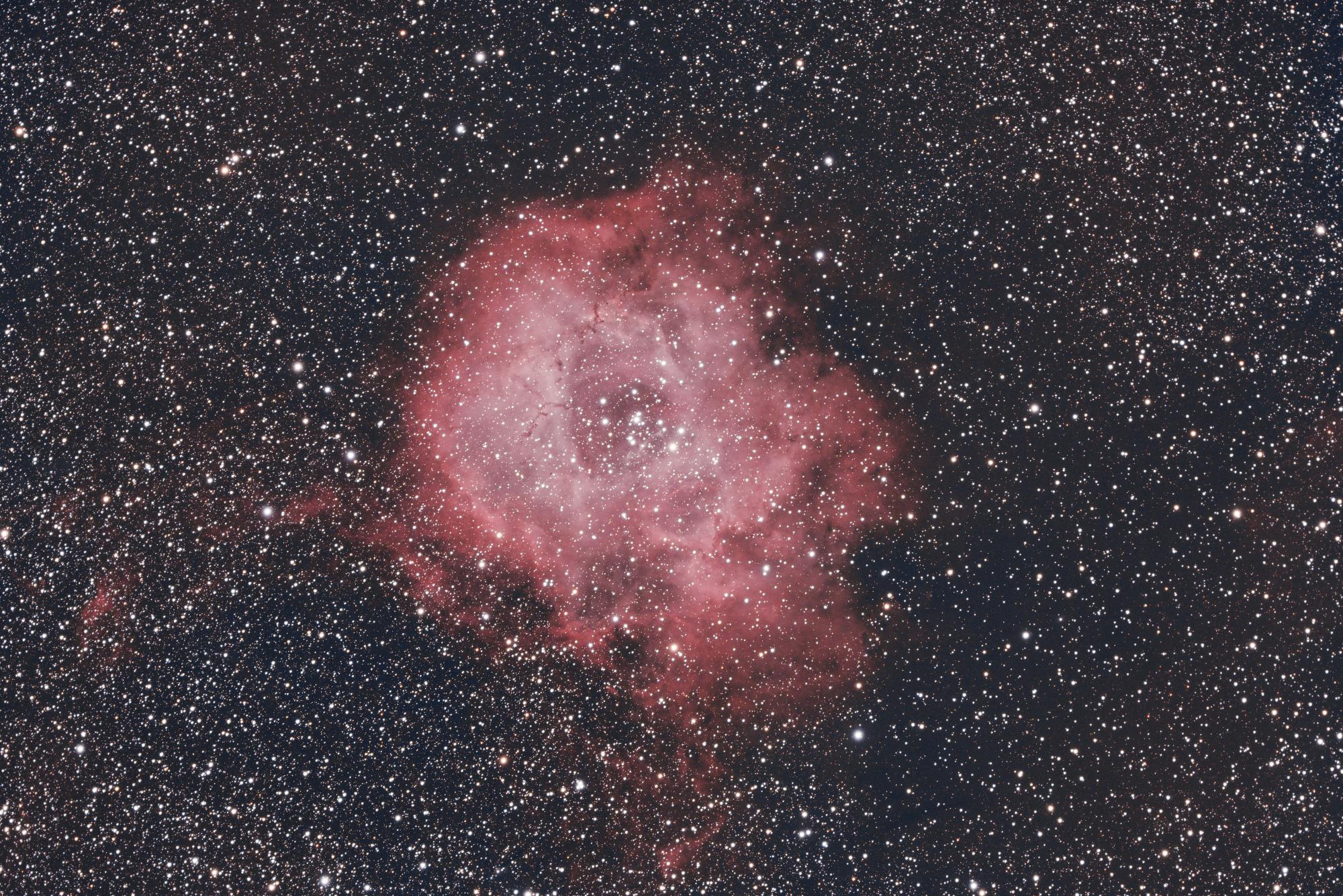 NGC2244_40x300s_55d_gain100_20210108_-20C_LP_PS.thumb.jpg.37efcc05a6d61cd32ae419b0ec13f414.jpg