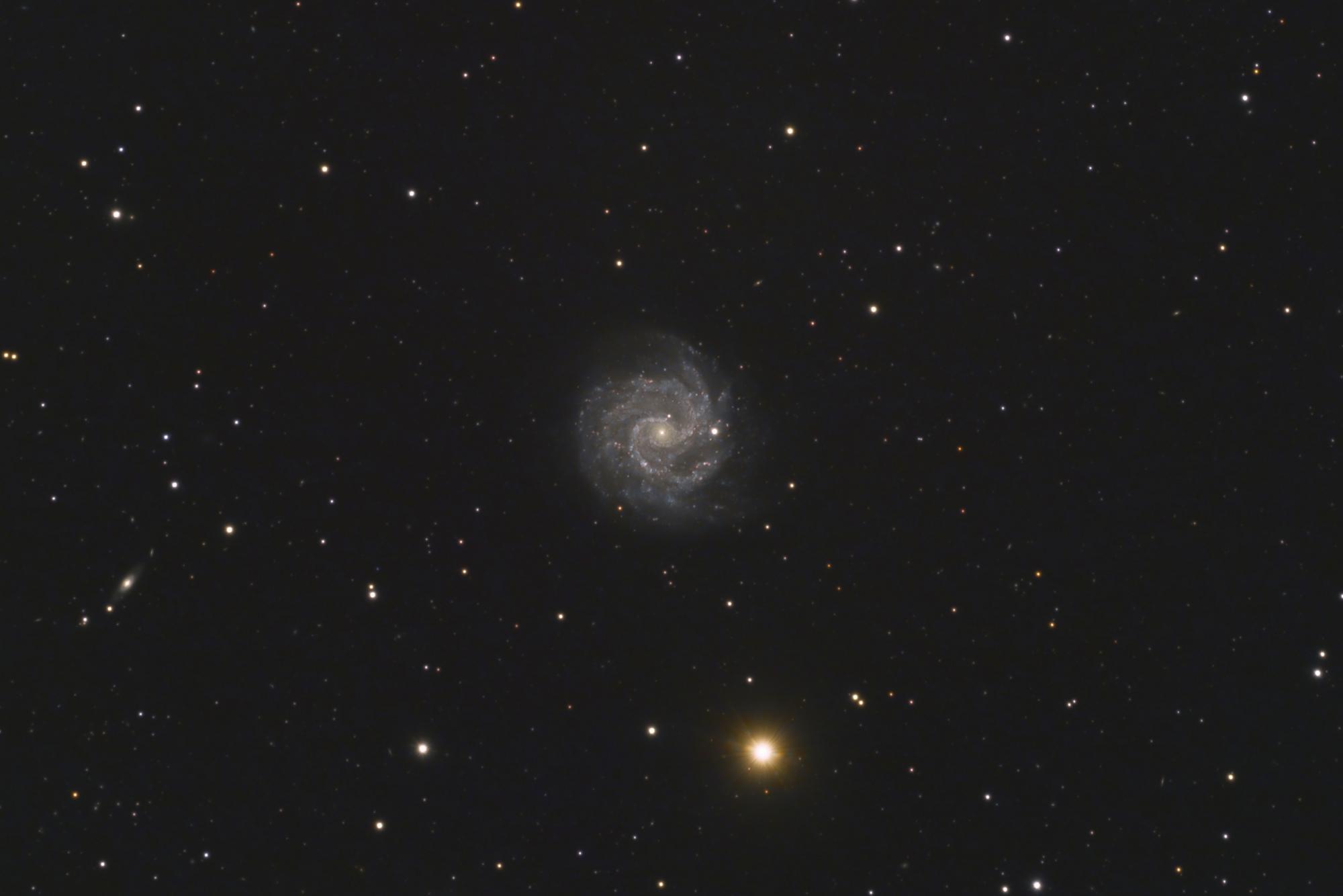 NGC3184.jpg
