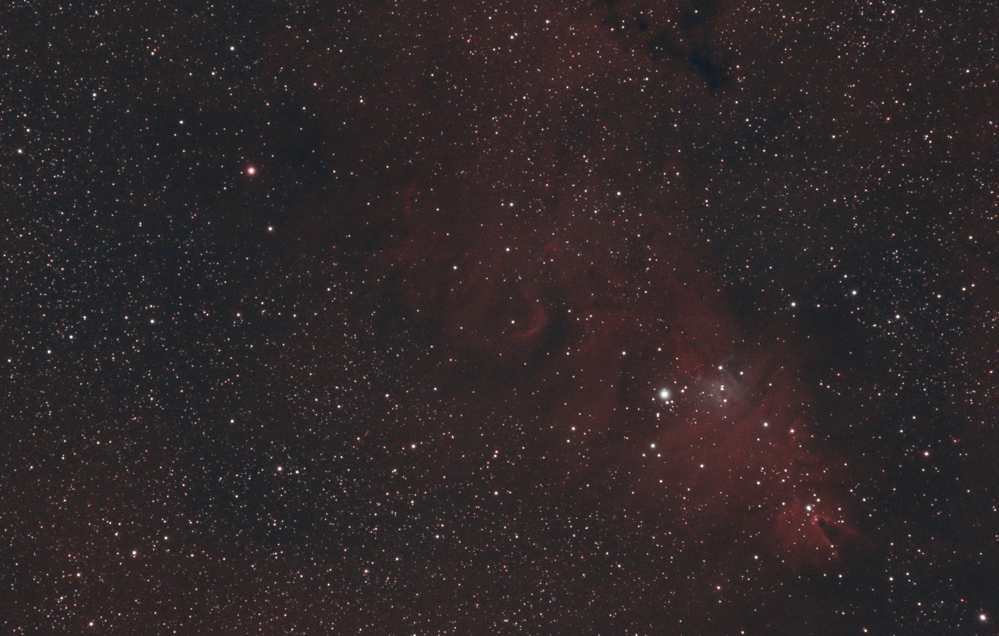 NGC_2264_20-02-2021.thumb.jpg.d9bf3ef45c9e6d7572983586bf8d7f87.jpg