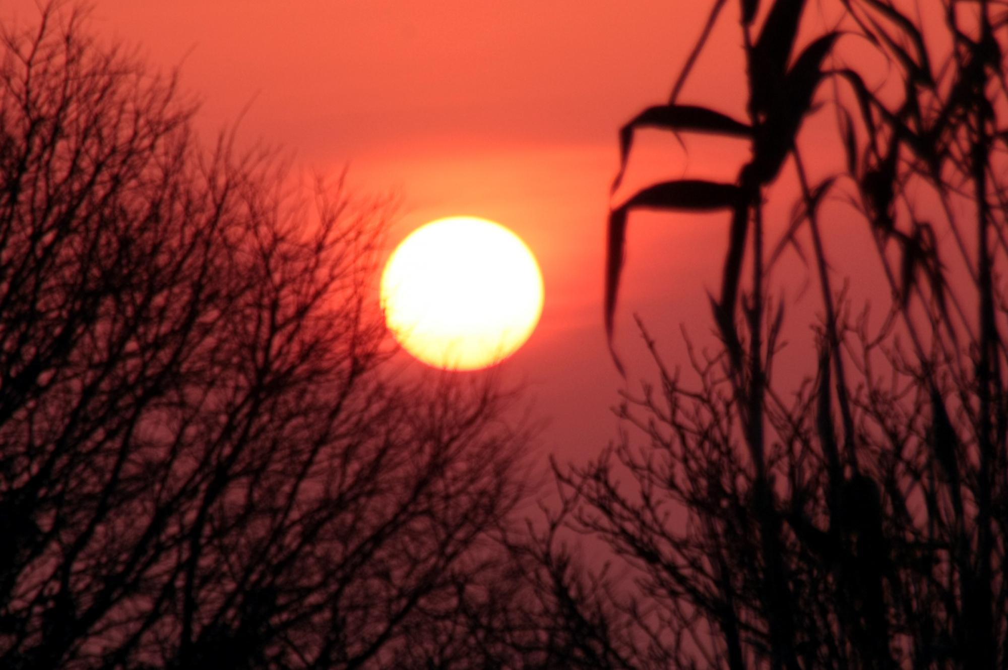 soleil 2.jpg