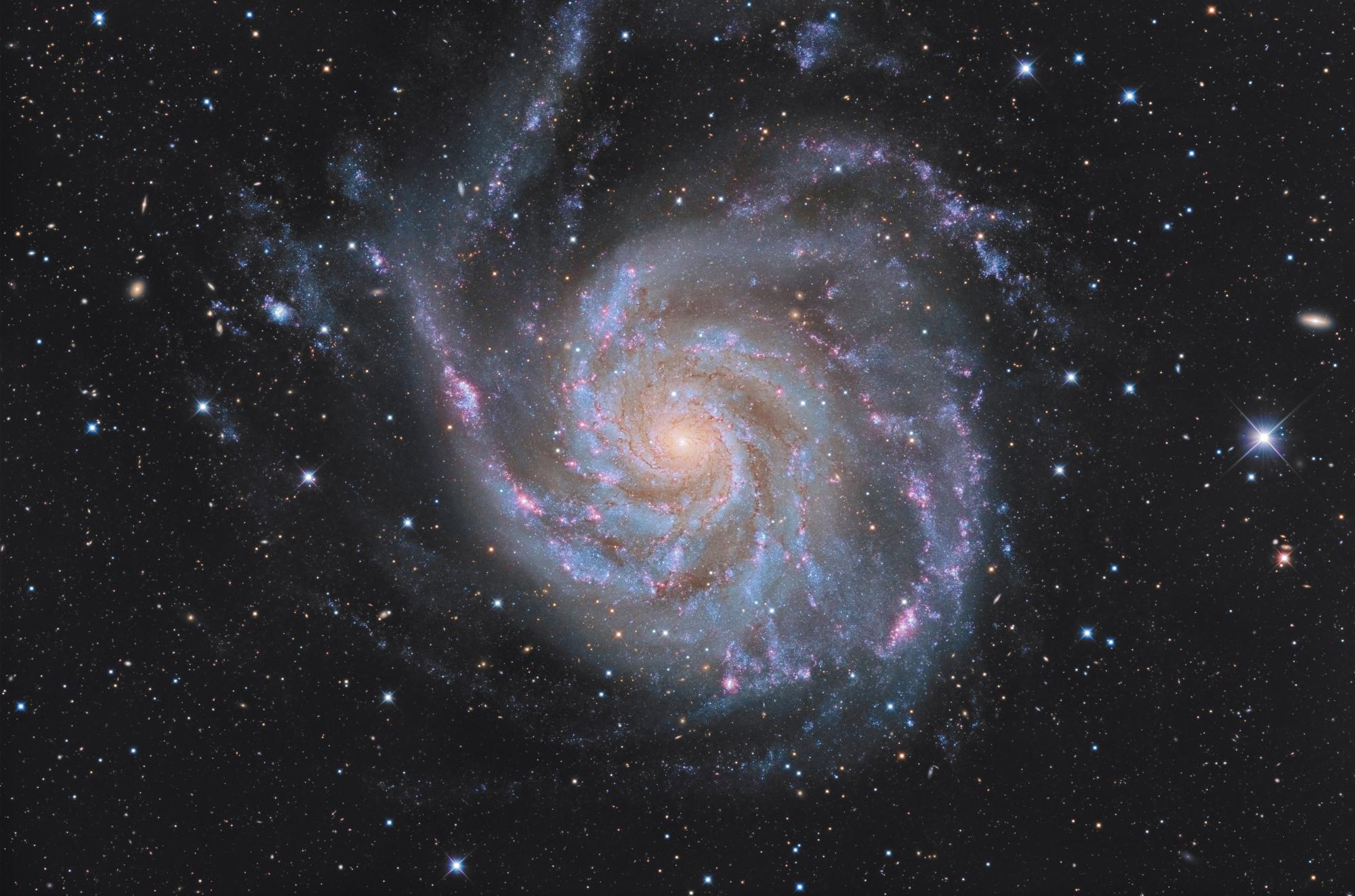 M101-final-3_web.thumb.jpg.6ecf52e6e0cfea75b8bdf5ff8cd06226.jpg