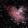 eVscope-M 16.jpg