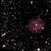 eVscope-Cocoon nebula.jpg