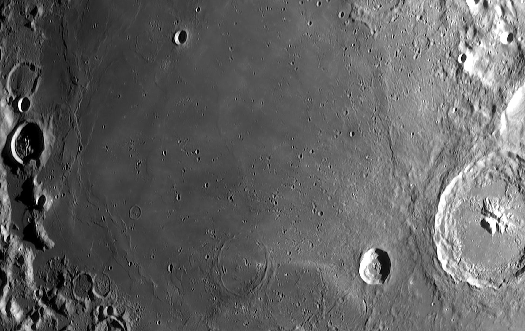 La Mer du Nectar SER 85029 TTB 14% BV 4 95%. JPEG.jpg