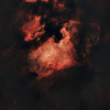 NGC7000 version Starless